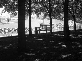 The Lonely Bench by jimmyselix