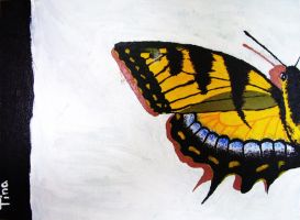 Tiger swallowtail butterfly by Feelxlikexmore