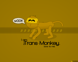 Trans-Monkey by Chromakode