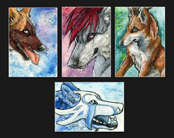 ATC .:Blue Shine Night:. by WhiteSpiritWolf