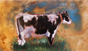 cattle 1 by yella24