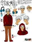 Storm Reference Sheet 2014 by masayo11