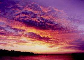 purple sky by urika66