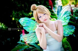 Fairy by fritzfusion