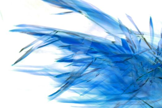 NeoLeaf the Second Run or Blue Flames by MarNoLe
