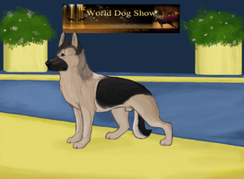 Prince at the World Dog Show by VonDamar