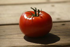 Red Tomato by resplendentgalaxies