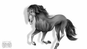 Horse by gismo84