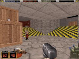 Duke Nukem 3D Dukematch by TheRumbleRoseNetwork