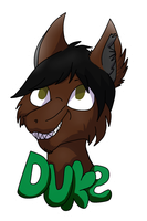 Duke :badge PC: by comLcsans