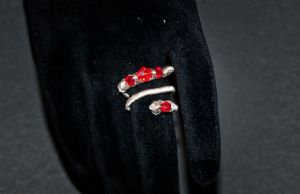 rings - silver and red by Sizhiven