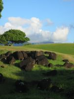 Kauai 4 by mshernock