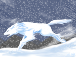 Within the Blizzard by Koto-wari