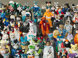GWR Fursuit Pic Snippit - AC2013 by ZinStone