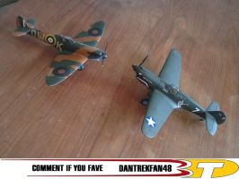 Spitfire and Warhawk by dantrekfan48
