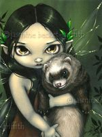 A Ferret and His Fairy by jasminetoad