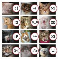 cats and smileys by persianightprinsess