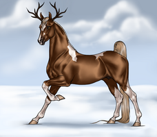 Dashing in the Snow by Ehetere