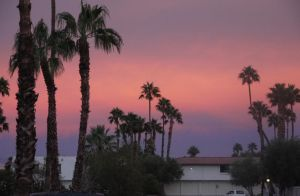 Palm Springs Sunset by VioletteOwl