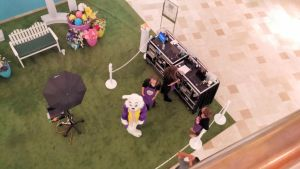 2015 Chandler Mall Easter Bunny Location 4 by BigMac1212