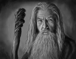 Gandalf by johnnymorrow