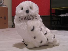 O RLY by mobydisk