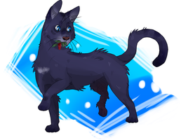 CinderPelt by Jersokoi