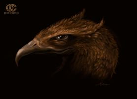 The head of an imaginary eagle by orioncreatives