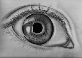 An artis's eye by briannam7900