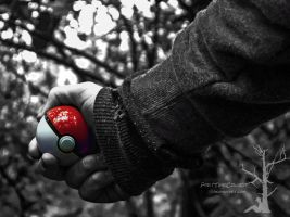 I know it's my destiny by PartTimeCowboy