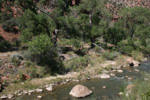 Zion Background Stock 2 by GloomWriter