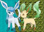 Leafeon and Glaceon by sliverwolf018