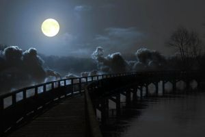 The walk through darkness by suzannerowcliffe