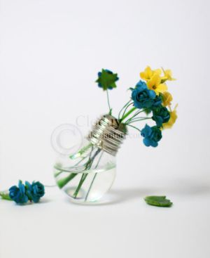 Flowers in a Bulb by cloduy