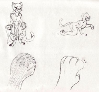 Cat Tf sequence part 2 by TimidTabby84