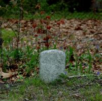 Tiny Grave by vicissitude-stock