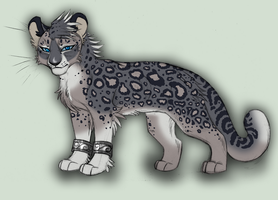 Snow Leopard -Design Commission- by KasaraWolf