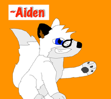 OC Request- Aiden by Poke-Master250
