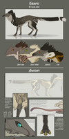 Species reference sheet - Kalbayu by Chaluny