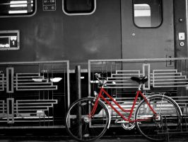 bicycle by Gundhardt