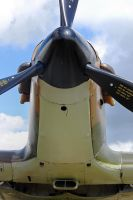 Hawker Hurricane Mk.XIIa by Daniel-Wales-Images