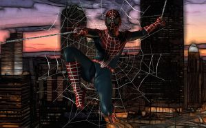 Spiderman - l'uomo ragno by hiram67