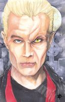 Spike James Marsters by ChrisOzFulton