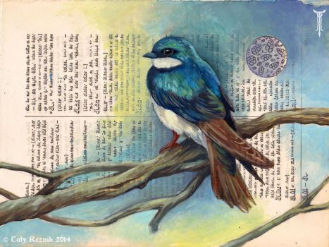 Tree Swallow by TrollGirl