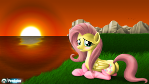 Sunset with Fluttershy - Socks by 115Predator