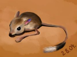 Jerboa by IronMouse86