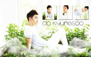 Do KyungSoo Faceshop Wallpaper by KpopGurl