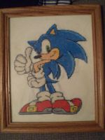 Sonic Cross Stitch by ChandrakantaAvani
