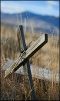 western cemetery by neaters2000