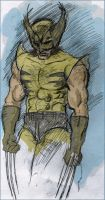 wolverine by cloudkev